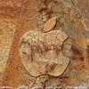 アップルを彫るとこうなる?iPhone壁紙