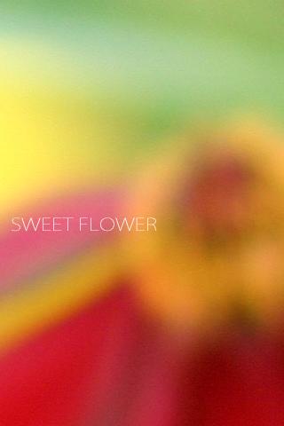 テクスチャーっぽい花のiPhone壁紙