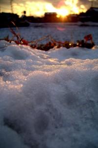 身近な雪景色なiPhone壁紙